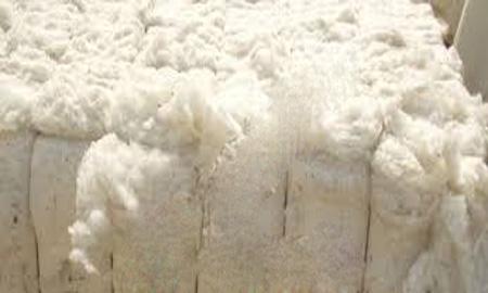 Row-Cotton